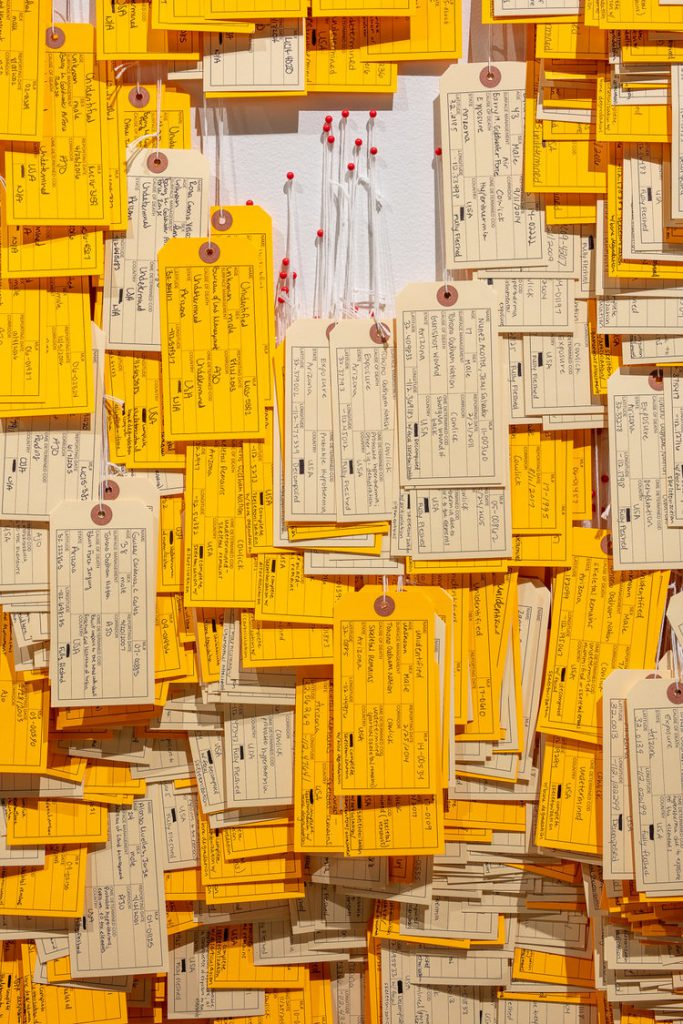 many toe tags on map representing migrants who died in the desert
